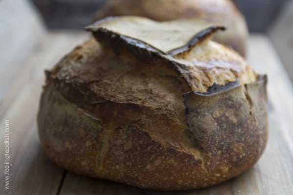 tartine bread boule| Feelingfoodish