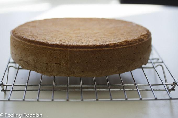 chocolate hazelnut torte out of pan