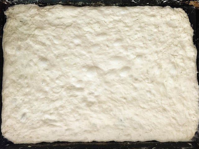 the dough as it appears spread out in the pan
