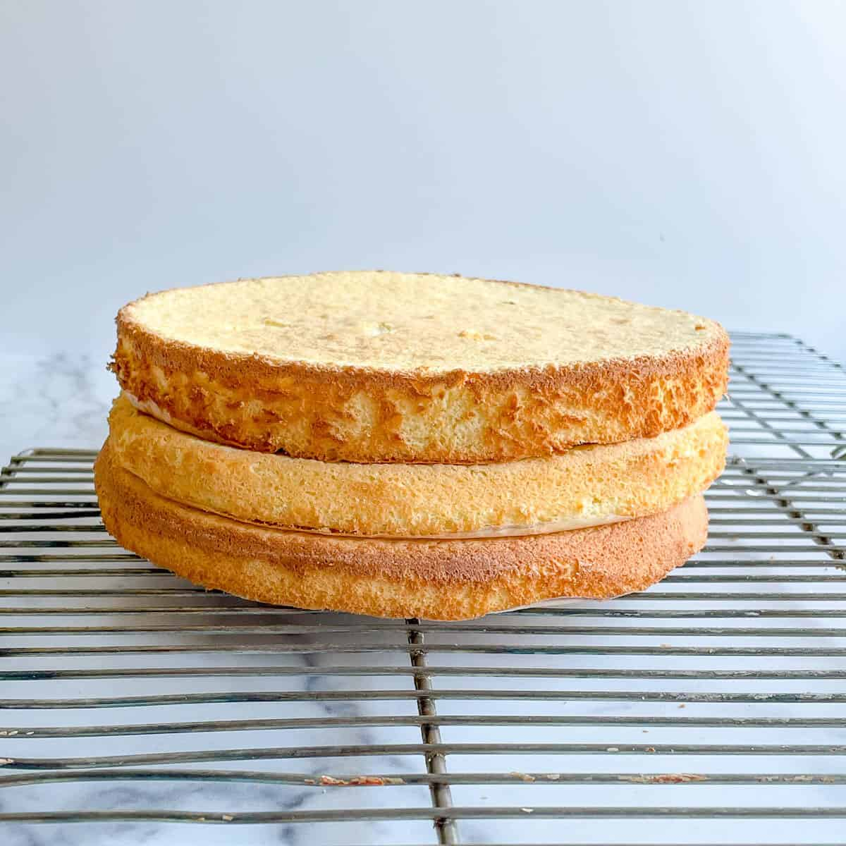 3 layers of sponge cake ready to be filled on wire rack