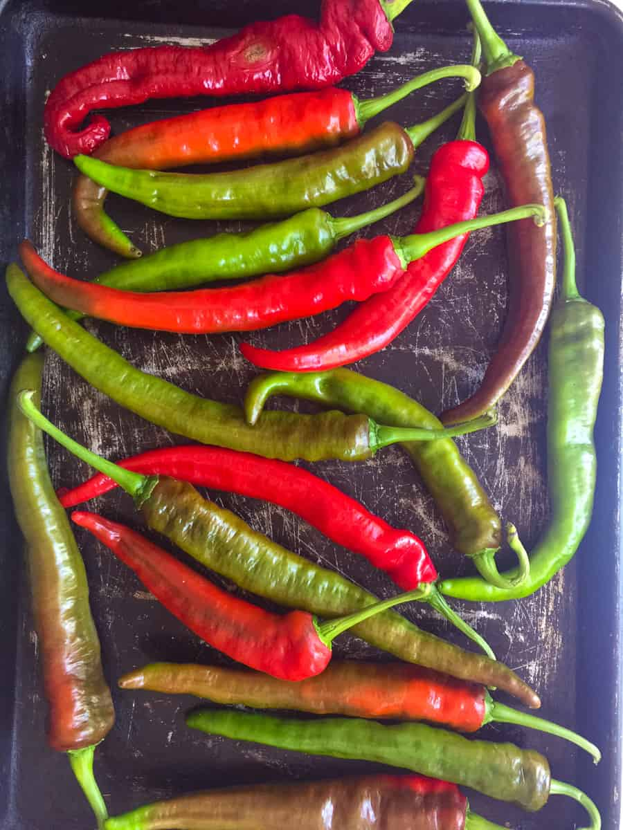 raw red and green Italian long hot peppers on baking tray